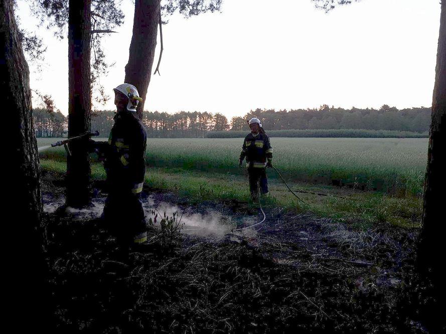 Pożar lasu - Zbrudzewo - 14.05.18 r.