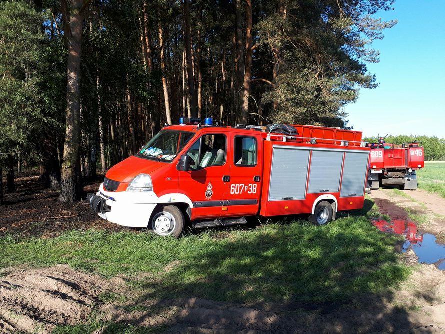 Pożar lasu - Zbrudzewo - 14.05.18 r. / OSP KSRG Pysząca